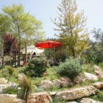 restaurant between tel aviv and jerusalem