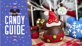 【2019クリスマススイーツ】カリフォルニアディズニーのキャンディーガイド!
