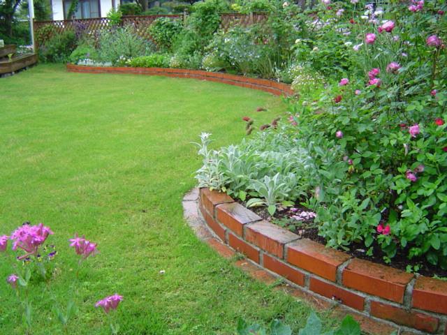 芝生に出るミミズの糞の対策