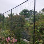 グリーンカーテンネットの張り方【支柱からDIYでやってみた】