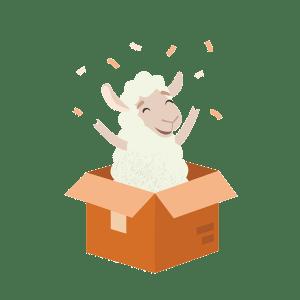 Ovis Box Ma Première Veilleuse