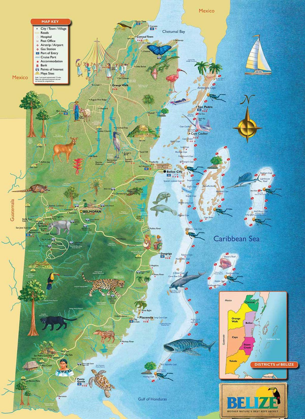 Belize Cruise Port Map