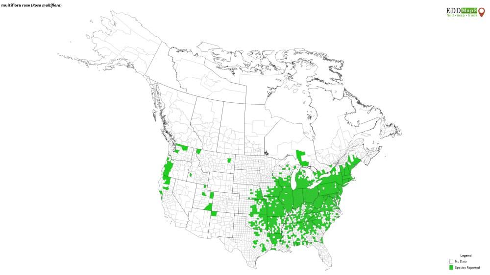 medium resolution of eddmaps distribution