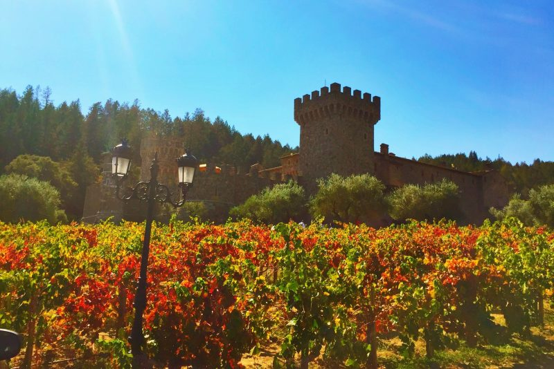 Napa Valley 101: Tips for First Time Visitors