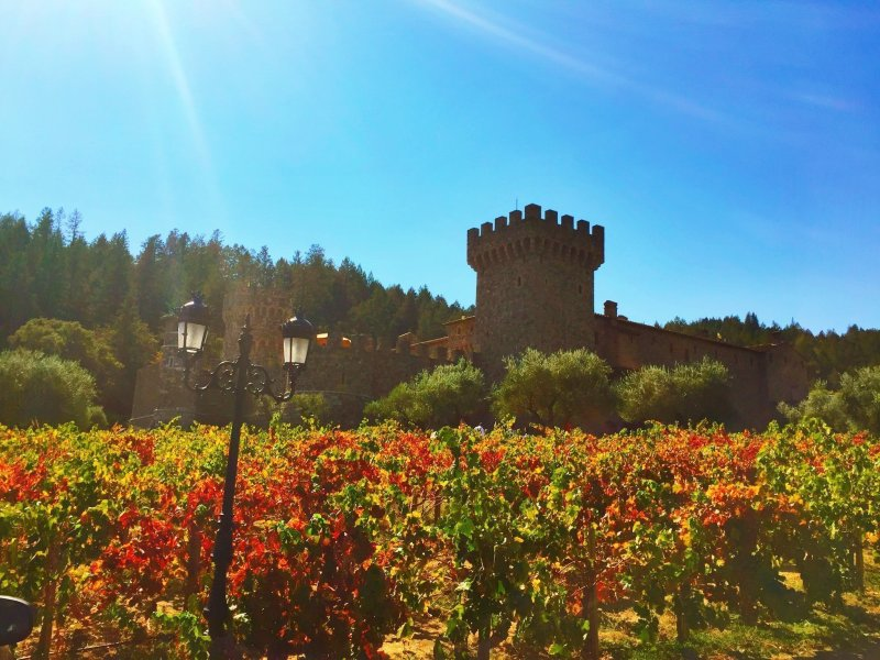 8 day Pacific Coast Highway road trip itinerary - Napa Valley; Castello di Amorosa