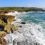 Plan the Perfect 1 Day in Cozumel, Mexico