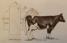 barn_cow