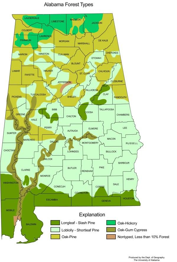Alabama Forest Types Mapsofnet