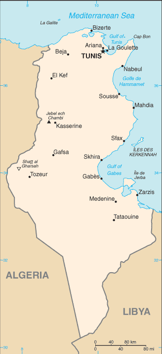 Tunisia cia wfb map.png