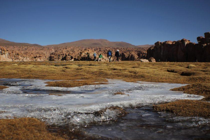 bolivia national park uyuni tour