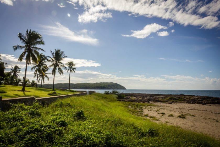 jamaica myco meditations treasure beach