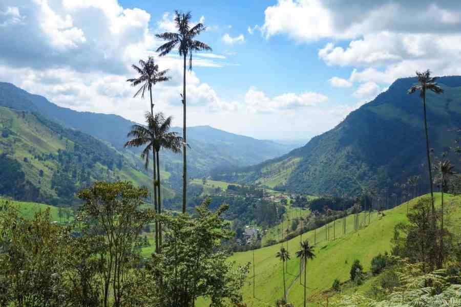 Cocora-Valley-Daniel-and-Ilona-from-Top-Travel-Sights-The-Best-Hiking-in-South-America
