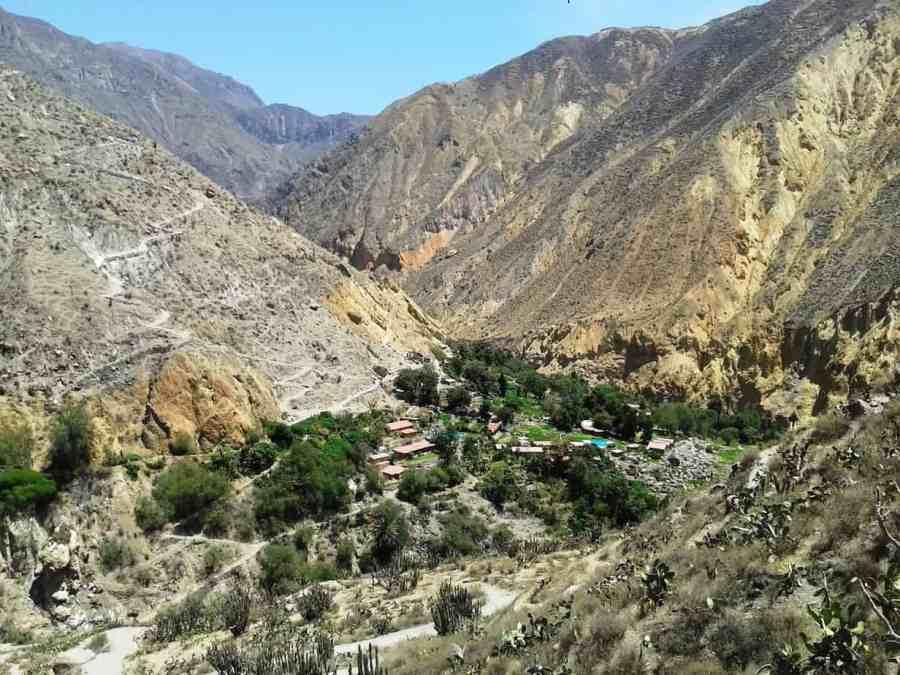 Colca-Canyon-Ellis-Backpack-Adventures-Best-Hiking-in-Peru