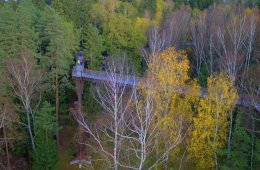 Treetop Walking - Anyksciai, Lithuania