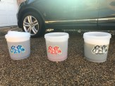3 Bucket Wash (Wash, Rinse, Wheels)