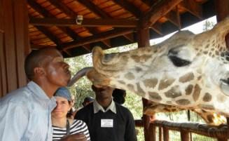 Kenya Safari Packages Prices