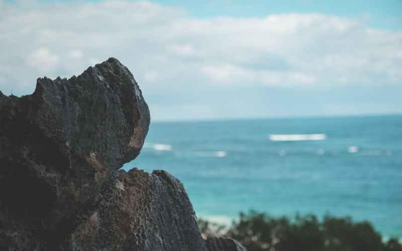coast with rocks and trees near wavy blue wavy ocean