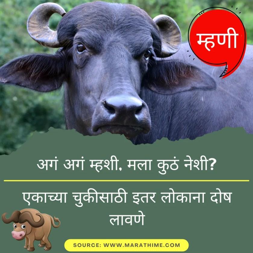 अगं अगं म्हशी, मला कुठं नेशी? - एकाच्या चुकीसाठी इतर लोकाना दोष लावणे - Marathi Mhani Images