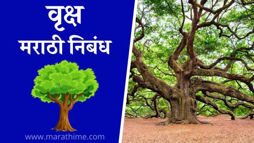वृक्ष निबंध मराठी, Essay on Tree in Marathi