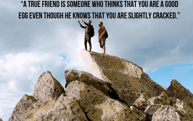 Friendship Status On WhatsApp