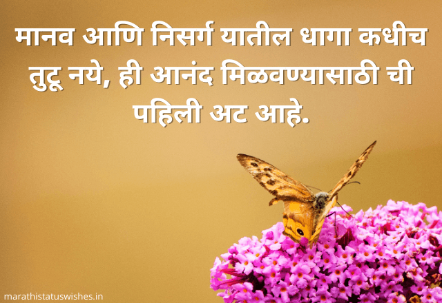 quotes on life in marathi