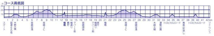 青島太平洋マラソン コース 高低差