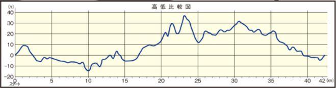 篠山マラソン コース 高低差