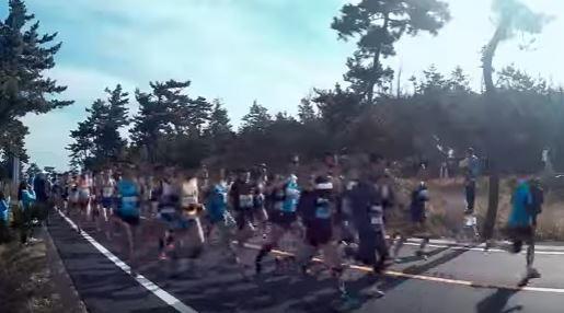 鳥取マラソン コース