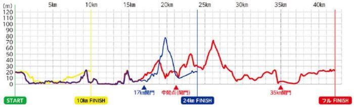 石垣島マラソン 高低差
