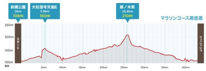 前橋・渋川シティマラソン 高低差