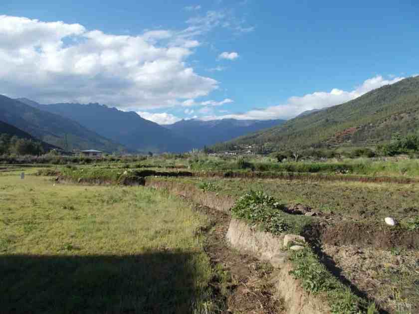 Global Limits Bhutan - The Last Secret - 200km Race Report 59
