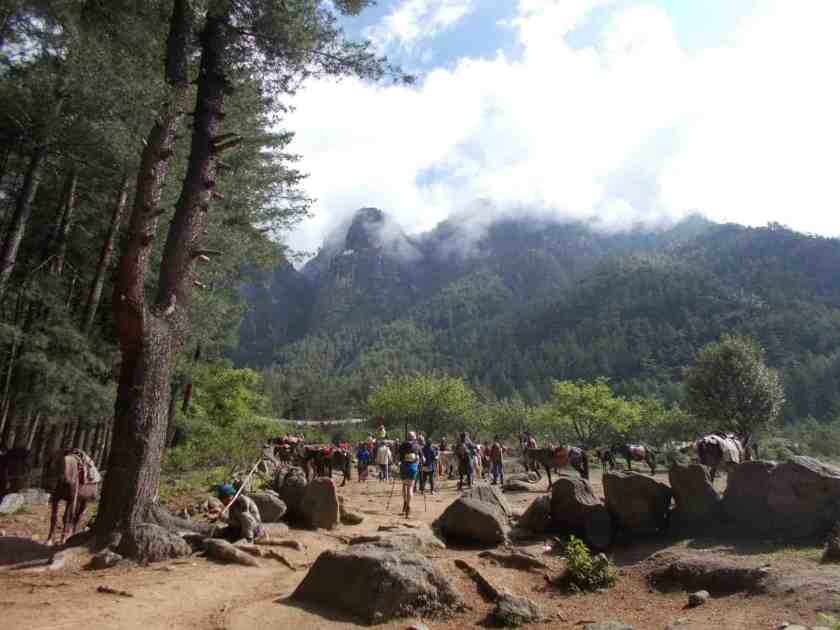 Global Limits Bhutan - The Last Secret - 200km Race Report 81