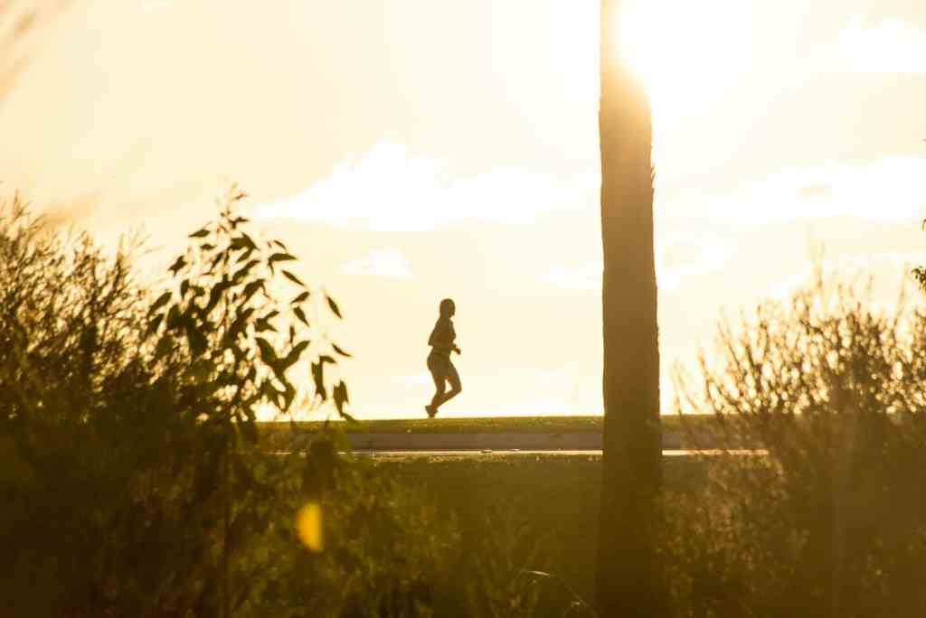 Running Nutrition Guide: What To Eat, For Runners 4