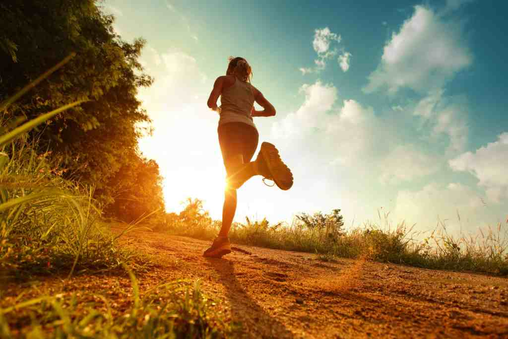 Recovery Runs Runner