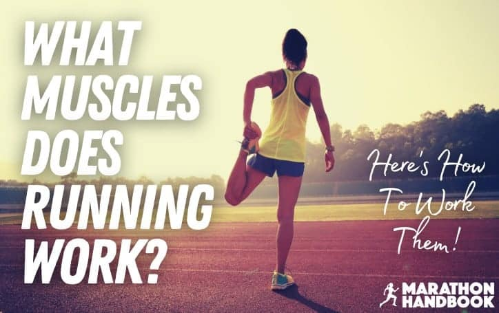 What Muscles Does Running Work_