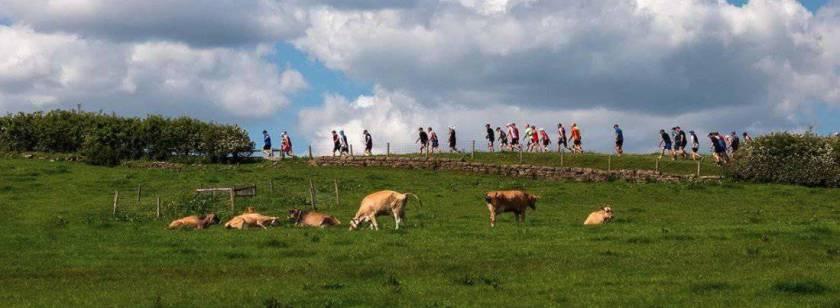 greener miles cowshed backyard ultra