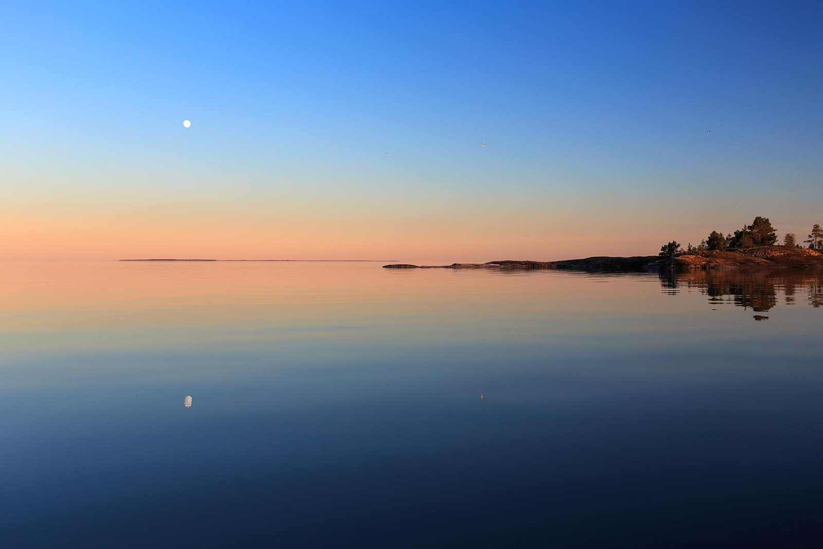 Landscape of silence