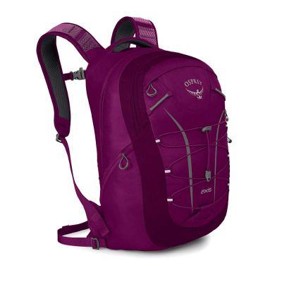 Osprey Packs Axis Backpack