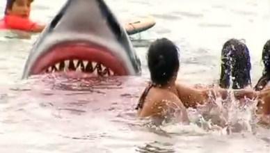 Cuando todo parecia tranquilo.... Tiburón, menudo susto