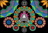 Psychedelic images (14)