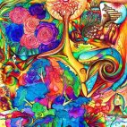Psychedelic images (58)