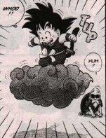 Dragon Ball (12)