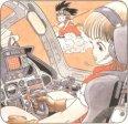 Dragon Ball (132)