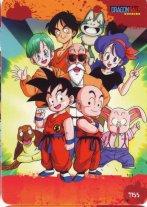 Dragon Ball (65)
