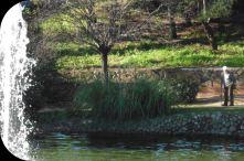 Parque Arroyo de la Represa, Marbella
