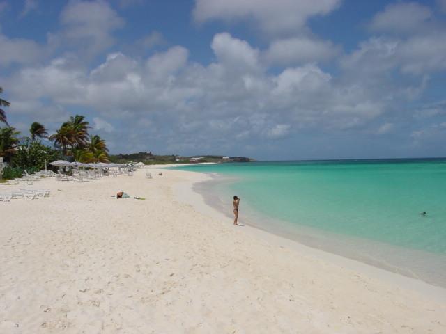 shoal beach image