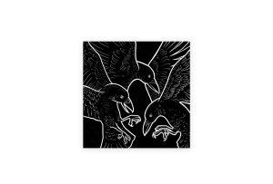 marceau_truffaut_raven_wide