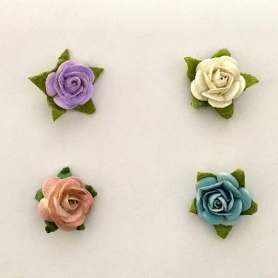 FC-29-Flower-Colors
