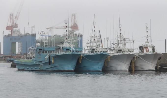 Les brumes du port de Rausu
