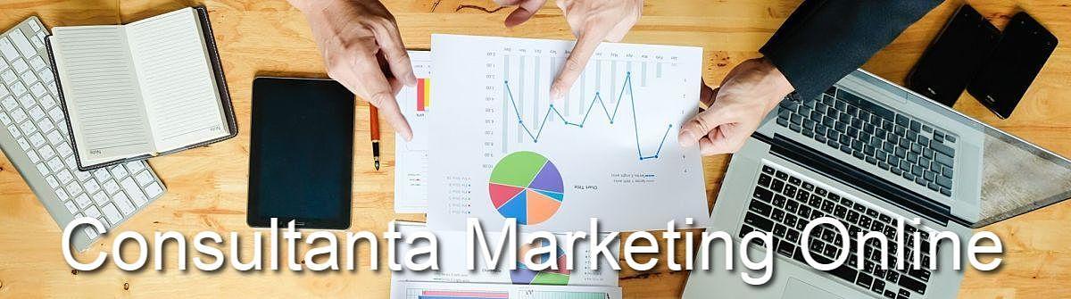 Consultanta in Marketing Online in Craiova
